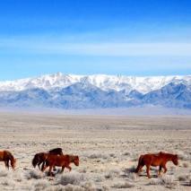 À quelques kilomètres de la frontière. Crédits photos Team Rando