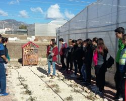 Visita al Instituto de Investigación y Formación Agrícola y Pesquera de Andalucía -IFAPA.