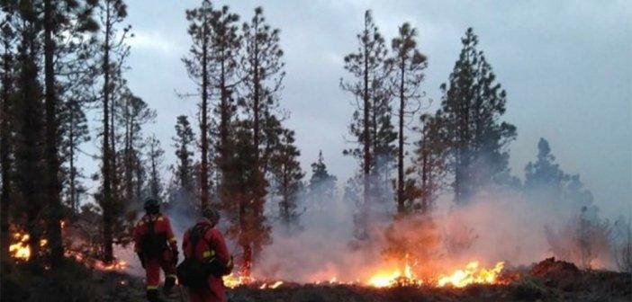 Огонь уже уничтожил десятки гектаров на вершинах Тенерифе