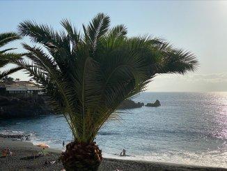 """Тенерифе: погода опередила, на остров надвигается сахарская жара со своими """"друзьями"""""""