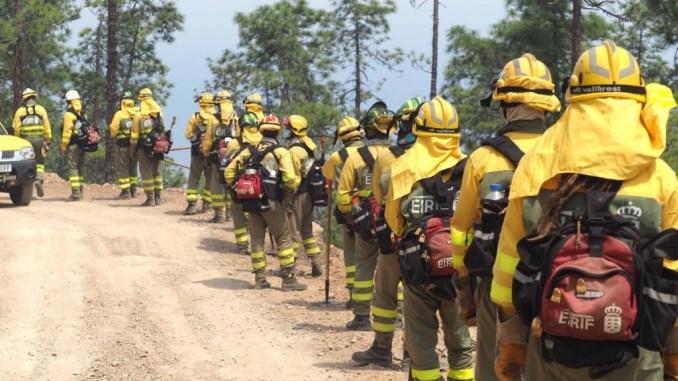 Пожар на Тенерифе продолжается, сведения об уровне проблемы противоречивы