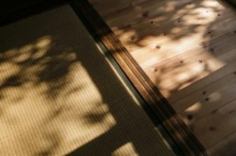 縁側には陽射しと庭木の影が映り、ゆっくり時間が流れます。