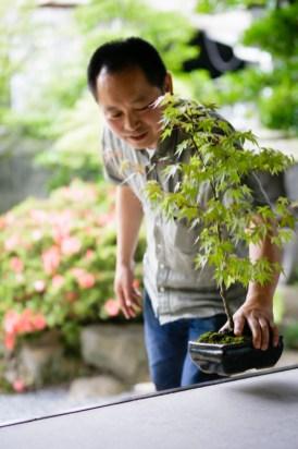 種から発芽して育てている秋岡邸生まれの昌彦さんの盆栽。