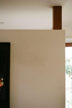 玄関の仕切り壁。この上にぴったり収まるきなこちゃん。上る時の足跡が…。