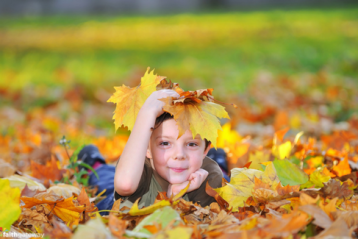 Our Favorite Kids' Books for Fall