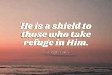 He is a shield to those who take refuge in Him.