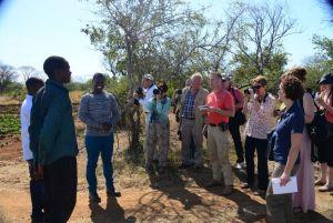 cattle_visit_zambia
