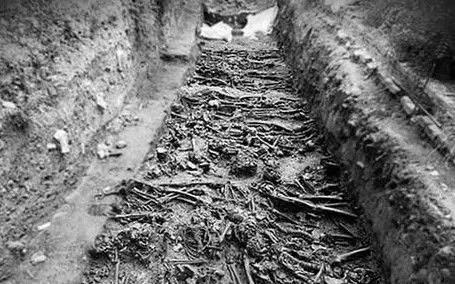 Risultati immagini per poveglia l'isola dei morti