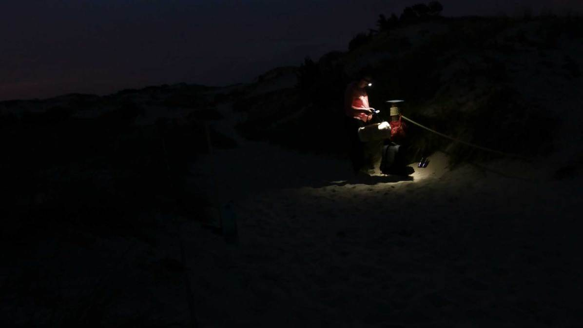 Dunes recordings