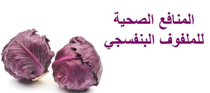 الملفوف البنفسجي-ifarasha