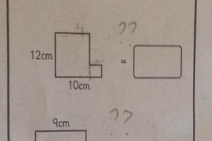 Maths question aimed at ten-year-olds at a school in Glossop. It has left pupils and parents baffled.