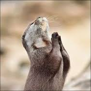 Dear Lord, today is another day, help me lose a little weight.