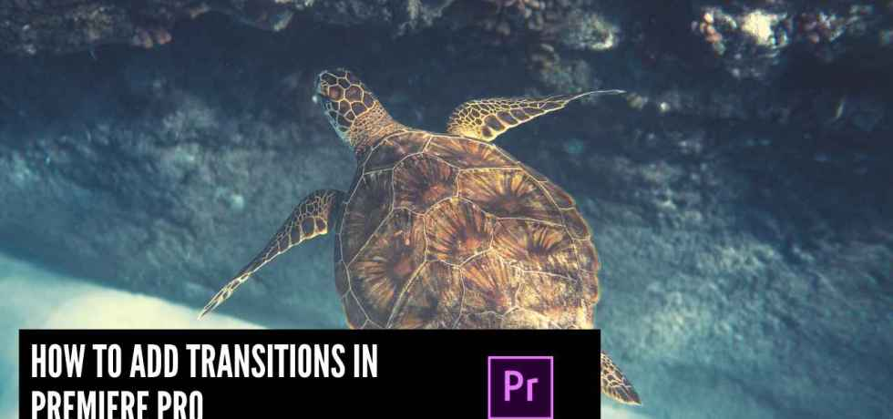 How to add transitions in Premiere Pro