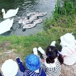 il gioco e l'autonomia dei bambini piccoli