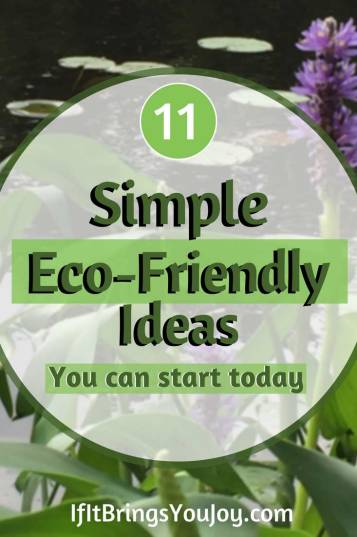 Make eco-friendly choices to help our environment. 11 simple ideas you can quickly implement into your daily life. #IfItBringsYouJoy #Ecofriendly #Environment