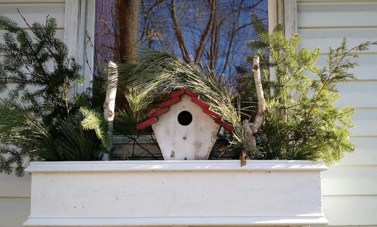 Window planter decorated with birdhouse and natural elements