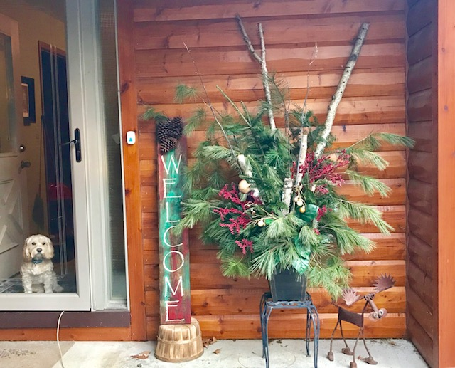 Porch decor made with birch logs and pine boughs