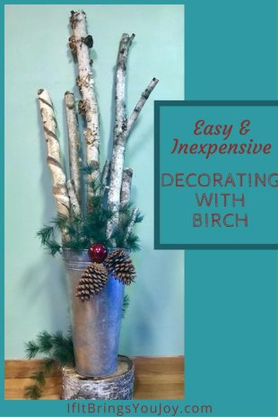 Easy and inexpensive DIY home decorating idea using items found in nature.