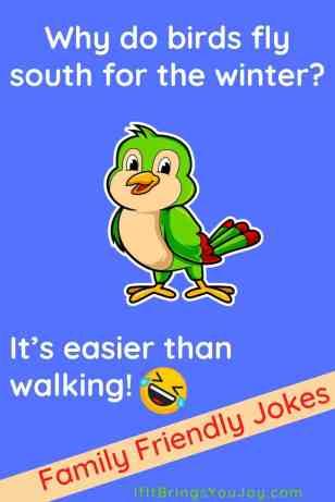 Kids joke about birds