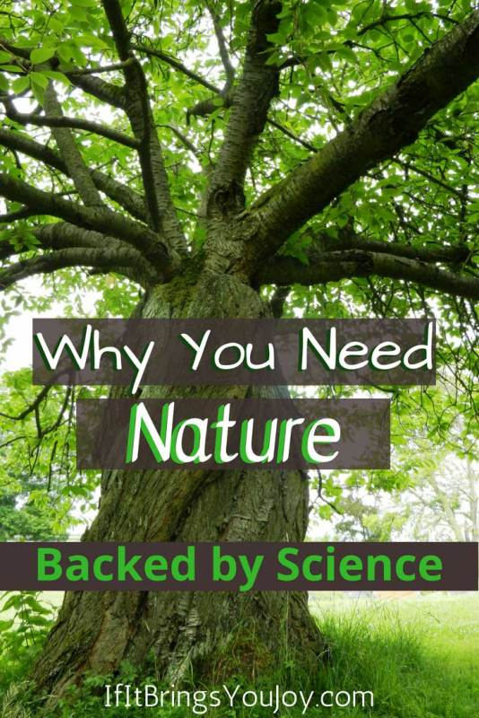 Boost your mood and physical well-being naturally! Time spent in nature will bring you great benefits such as lower blood pressure, reduced stress, and anxiety relief. #Nature #Stress #Anxiety