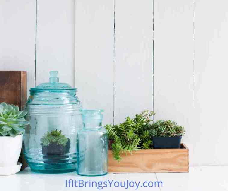 Creative containers used for home decor