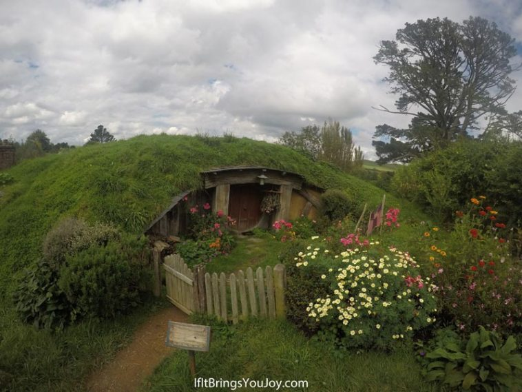 Hobbit hole in the movie set in Hobbiton, New Zealand