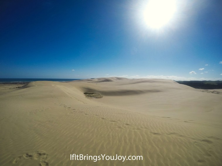 Incredible sand dunes in Cape Reinga, New Zealand