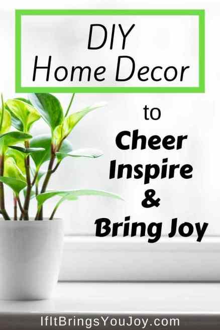 Decorative home plant