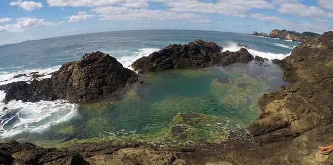 New Zealand's Northland: Hiking & Picking Kiwi