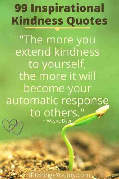 Seedling representing extending kindness