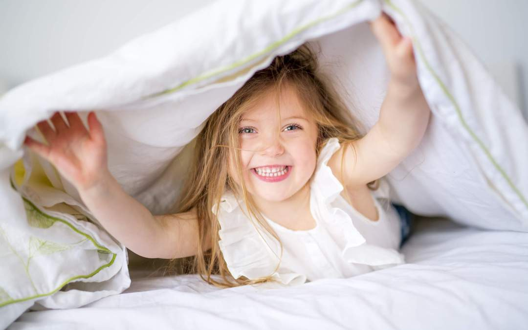 Establishing Smooth Morning and Evening Routines for Families – Video