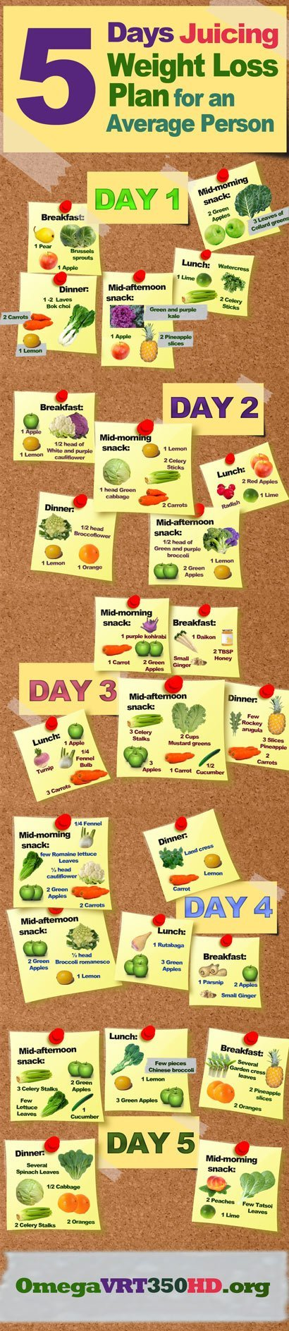 juicing diet plan for weight loss infographic