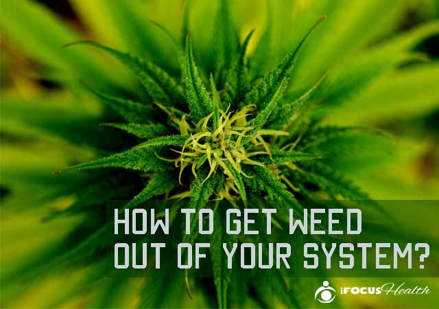 """How to """"weed out"""" information that might not be suitable for an academic paper?"""