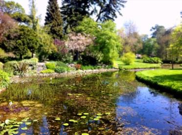 Botanical Gardens 9_edited
