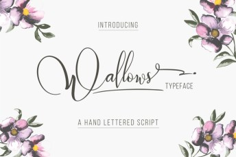 wallows-01-f