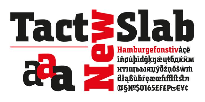 Tact Slab New Font Family