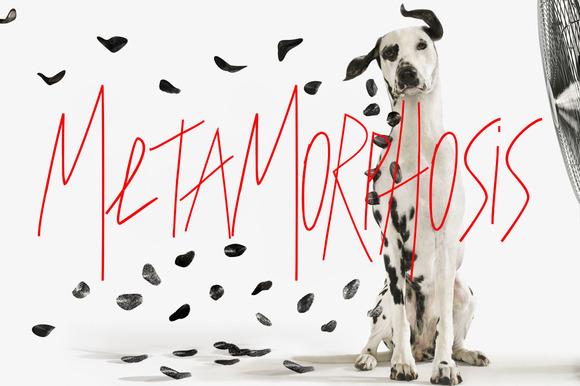 Metamorphosis Font