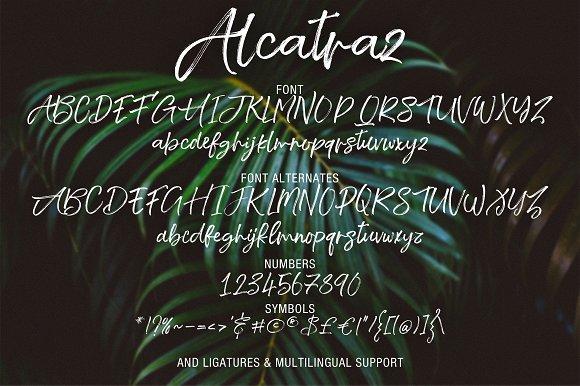 Alcatraz Script Font