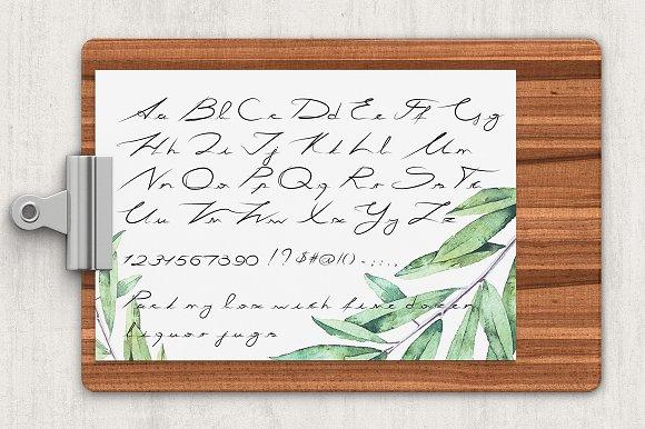 Basil Latin & Cyrillic
