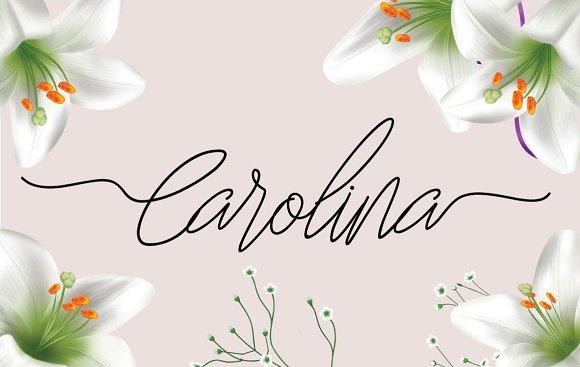 Carolina Script Font