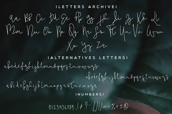 Hello Neighbor Script