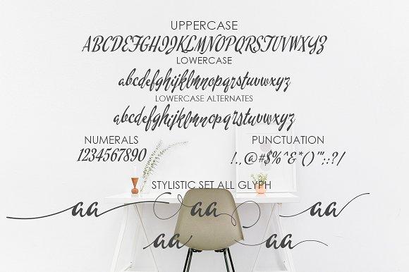 Chintia Script Font