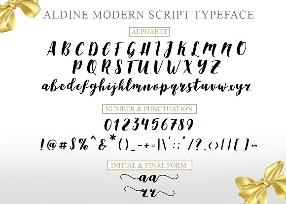 Aldine Script (20% off)