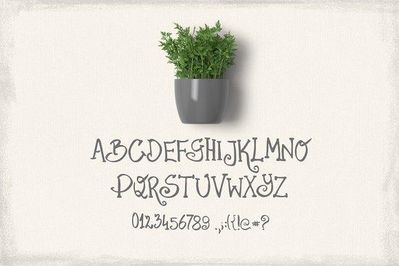 Parsley Font