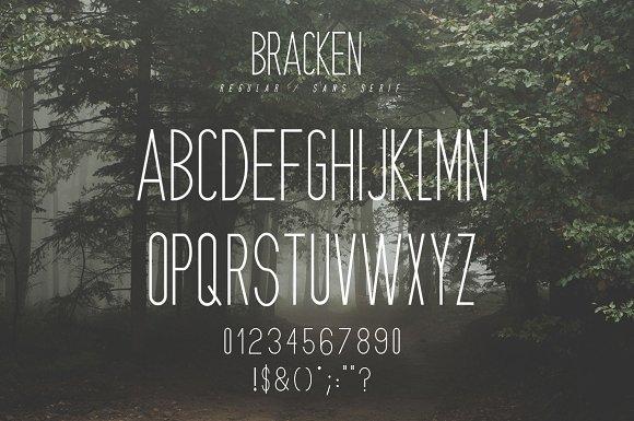 Bracken   A Hipster Font Family