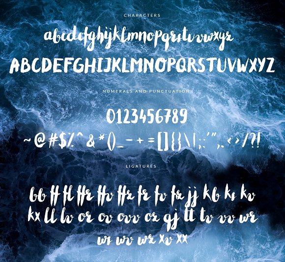 Cheeky--handwritten brush font+BONUS