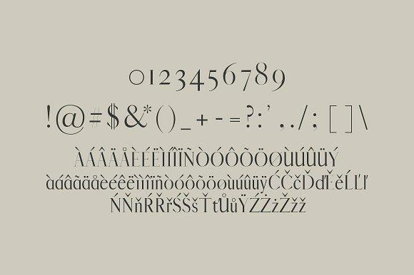 Jerrad Beautiful Serif Font Family