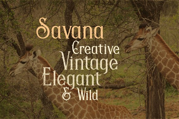 Savana - Display Font