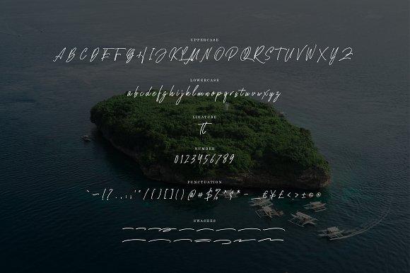 Homeland Script Font