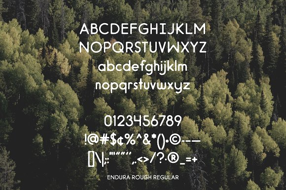 Endura Rough Font
